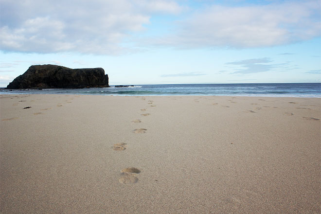 Sandy beach with footsteps