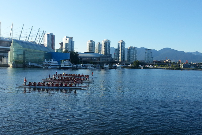 Dragon boats at practice.