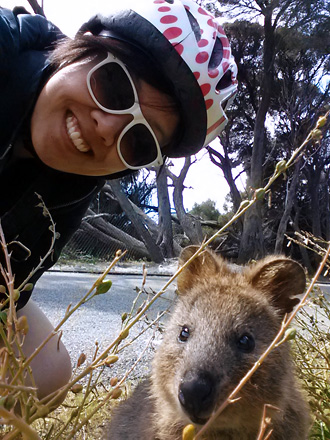 Selfie Time with Quokka