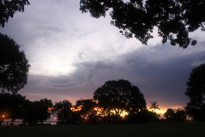 Darwin skies and silhouettes of trees.
