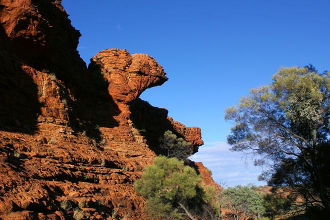 Camel looking rock formation.