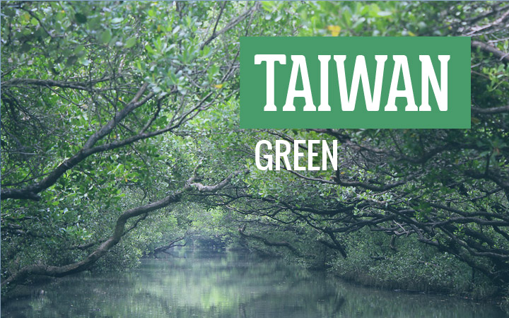 Taiwan Green: Boat ride with a reflection of greenery