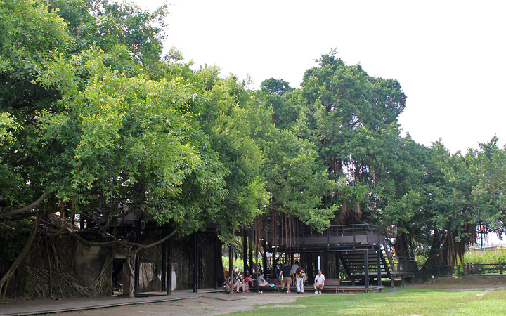 Near the entrance of the Anping Tree House.
