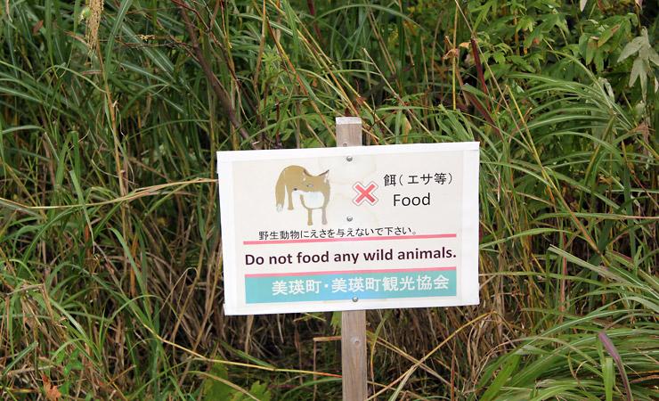 "Biei - Signage ""Do not Food any wild animals"""