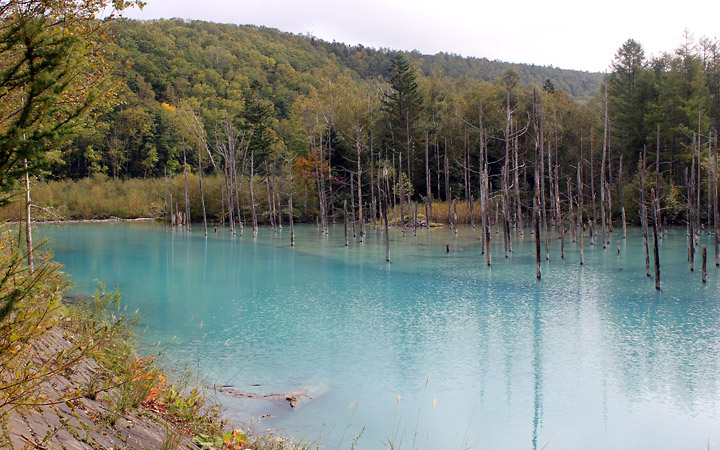Blue Pond, Biei