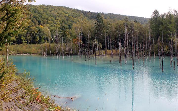 Blue Pond, Biei