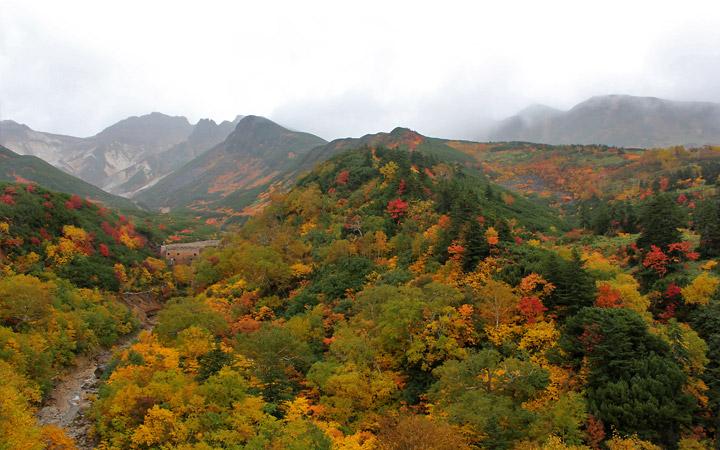 Biei, Hokkaido autumn colours