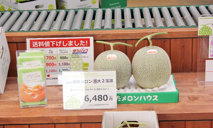 Furano cantaloupe x 2 ¥6480
