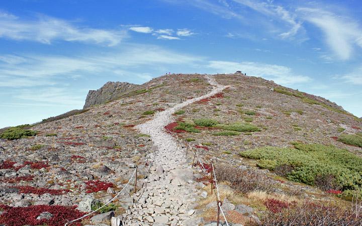 Final Post, the road to Mount Kuramon Peak from camp